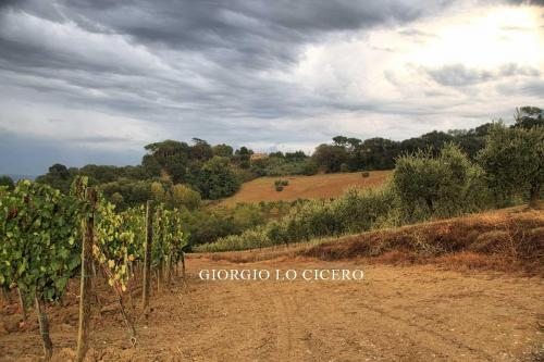 2018 09 17 2427- Giorgio Lo Cicero