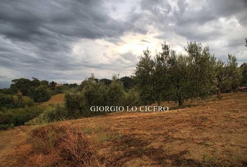 2018 09 17 2429- Giorgio Lo Cicero