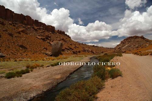 Argentina-Nord 2016 12 30 2274 - Giorgio Lo Cicero