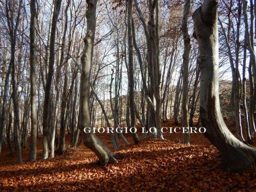 DSCN3528 - Giorgio Lo Cicero