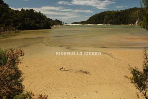 IMG 4380- Giorgio Lo Cicero