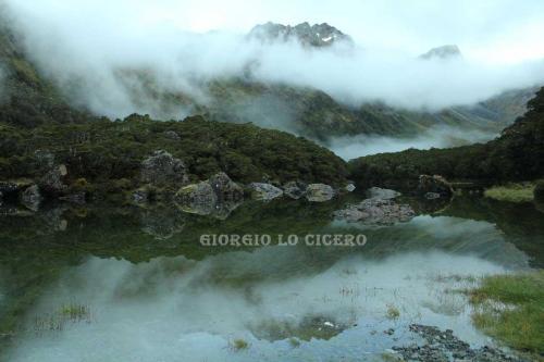 IMG 4819 (1)- Giorgio Lo Cicero
