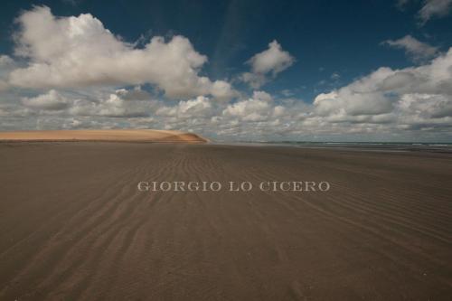 IMG 5995- Giorgio Lo Cicero
