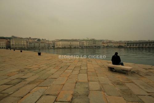 IMG 7748- Giorgio Lo Cicero
