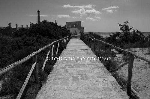 IMG 8697- Giorgio Lo Cicero