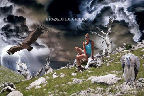 Imperturbable - Giorgio Lo Cicero