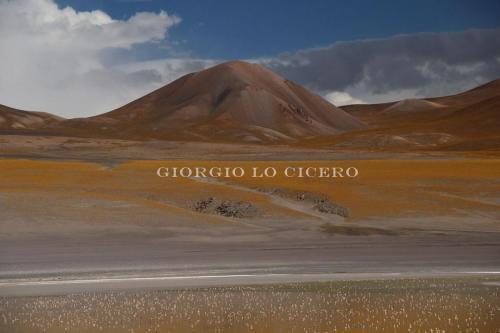 Laguna-Grande 2017 01 03 2639- Giorgio Lo Cicero