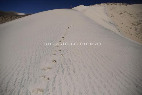 Puna-Argentina 2017 01 02 2391 - Giorgio Lo Cicero