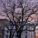 Sunset in Riga 2