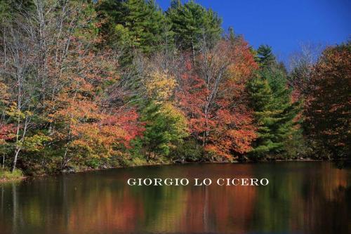 2017 10 12 0321 - Giorgio Lo Cicero