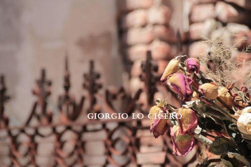 Cimitero-Recoleta 2016 11 06 1070- Giorgio Lo Cicero