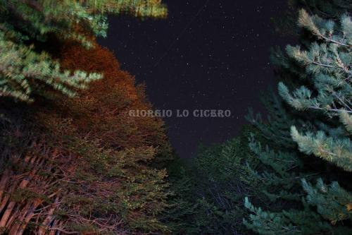 Etna 2016 09 03 0960 - Giorgio Lo Cicero