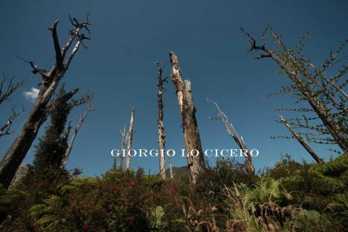 IMG 4657- Giorgio Lo Cicero