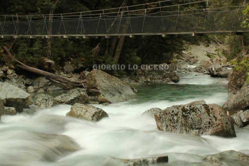 IMG 4785- Giorgio Lo Cicero