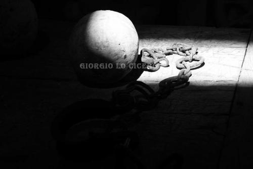 IMG 5369 - Giorgio Lo Cicero