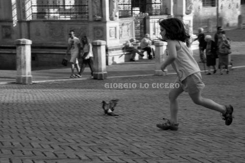 IMG 6973- Giorgio Lo Cicero