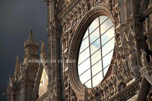 IMG 7302 - Giorgio Lo Cicero