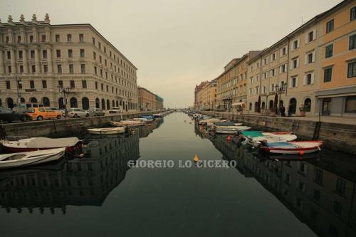 IMG 7729- Giorgio Lo Cicero